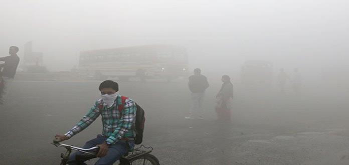 El entorno ambiental afecta más a la salud que la herencia genética