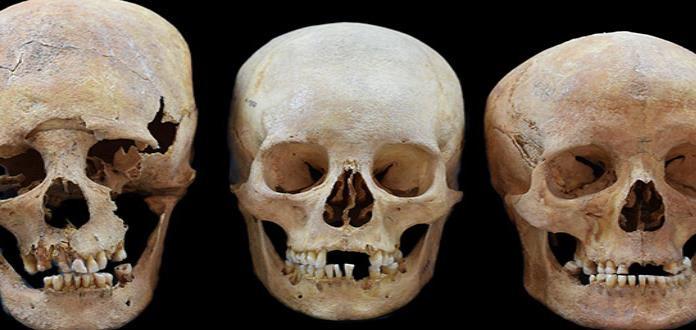 Cráneos alargados muestran migración de mujeres en Europa