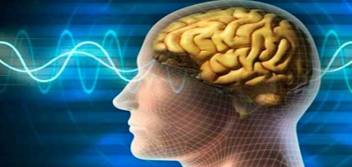 Pensar rápido y memorizar más, los métodos para potenciar el rendimiento intelectual