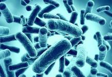 Descubren que bacterias pueden viajar entre continentes en polvo atmosférico
