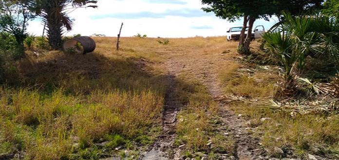 Abigeos destazan vaca en un rancho