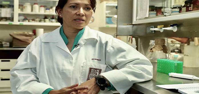 Papiloma: el arduo camino  para eliminar el virus