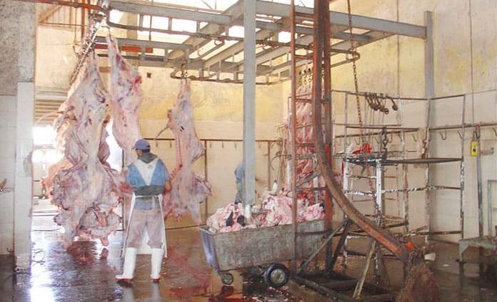 Suman 450 kilogramos de carne con clembuterol asegurados en 2019: Coepris