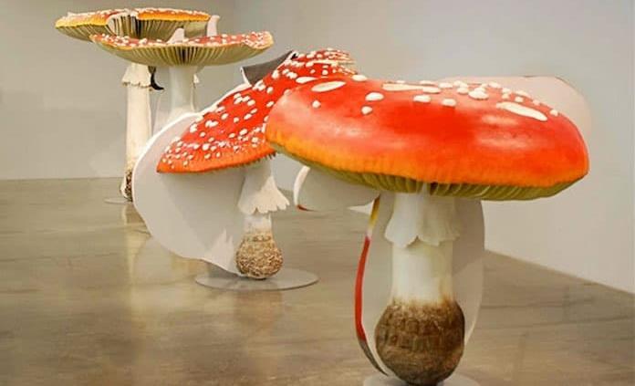 Llegan al Museo Tamayo los hongos gigantes de Carsten Höller