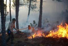 Mantienen combate a mega incendio forestal en norte de Veracruz