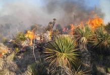 Arden 300 ha de pastizales en la Zona Altiplano