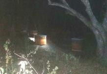 Abejas salen de apiario y atacan a por lo menos 10 personas en Tamuín