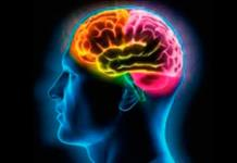 El cerebro sabe diferenciar entre belleza humana y obra de arte
