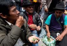 Cocaleros bolivianos en inusual protesta