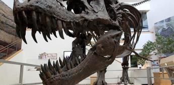 Un estudio afirma que los dinosaurios podrían tener un origen diminuto