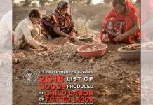 SLP permite la esclavitud infantil: EUA