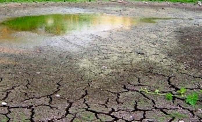 Ya hay escasez de forraje y agua en comunidades