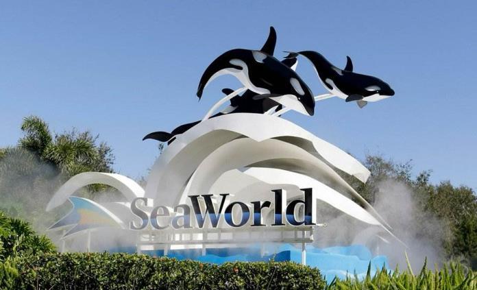 SeaWorld despide a empleados en todos sus parques temáticos de Estados Unidos