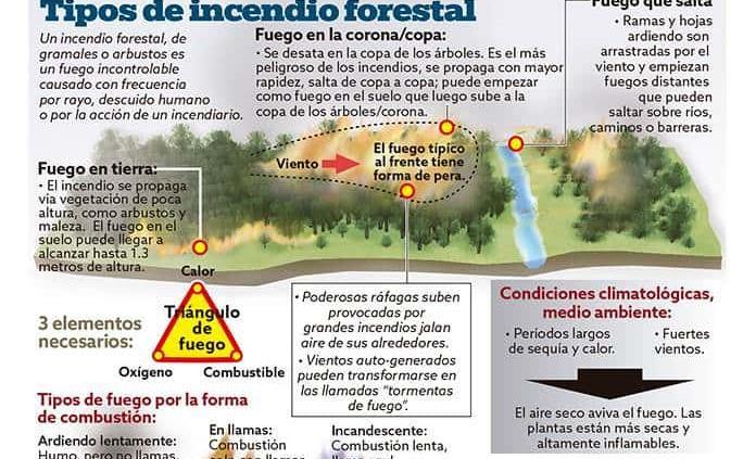 Infográfico: ¿Cómo se propaga un incendio forestal?