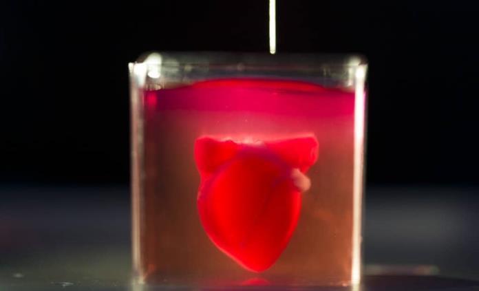 Científicos israelíes imprimen primer corazón 3D con tejido humano