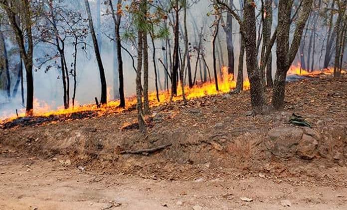 Aplica Ejército plan DN-III para combatir incendio en Rioverde