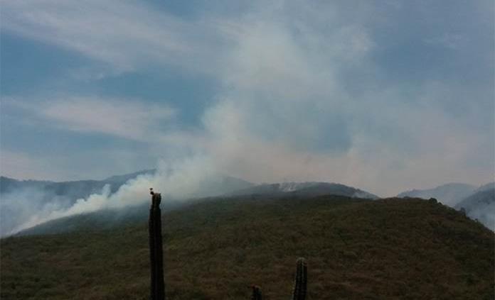 Aún activos, incendios en Rioverde y Valles