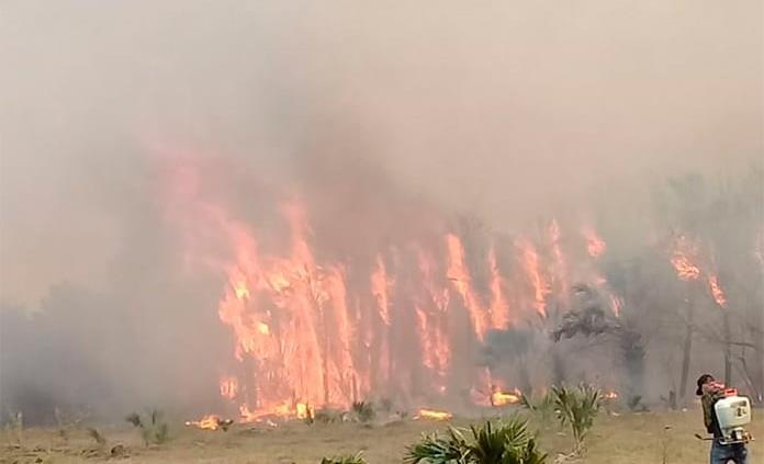 En siete días, casi 500 incendios forestales en SLP