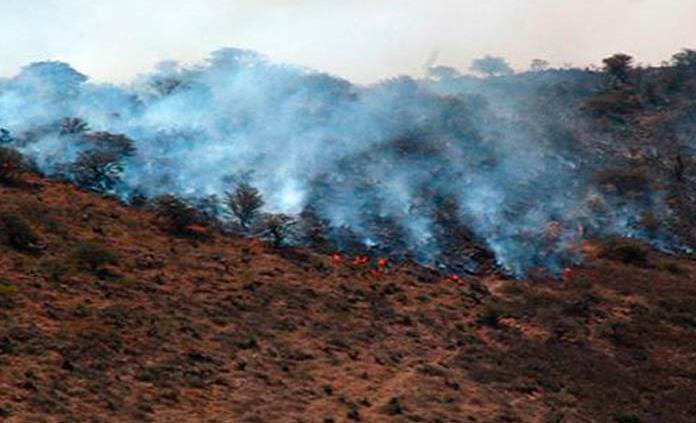 Reportan 18 incendios simultáneos en Chiapas