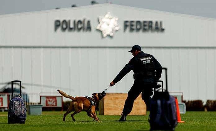 Unidad canina, con 30 años de servicio