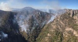 Incendio ha afectado 35 hectáreas de la sierra de San Miguelito