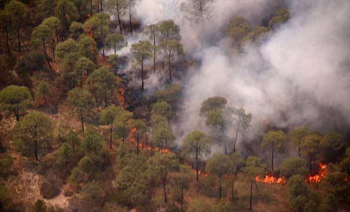 Diario del Infierno: Viento podría reactivar los incendios