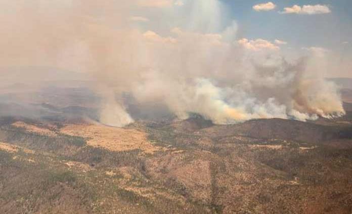 SLP y otros 9 estados concentran 72% del total de terreno dañado por incendios en el país
