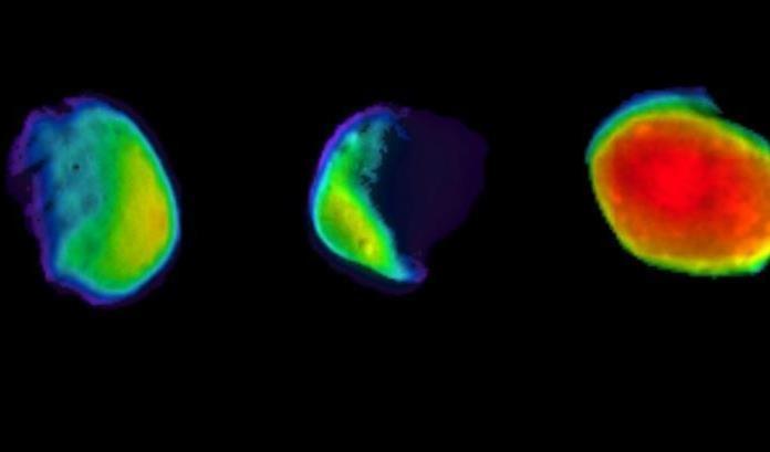 NASA muestra imágenes de Luna llena en Marte