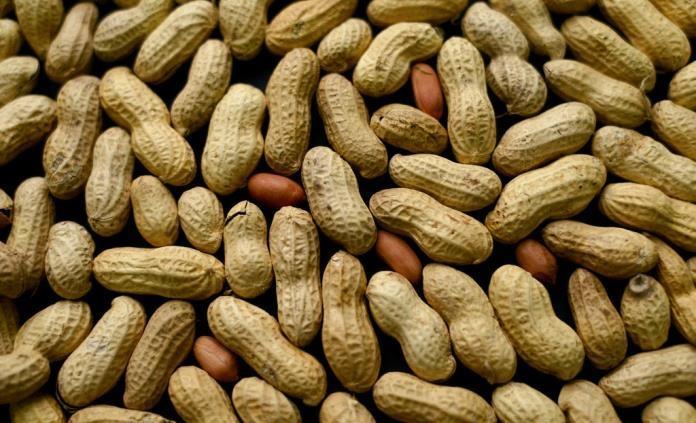 Diez datos curiosos sobre el cacahuate