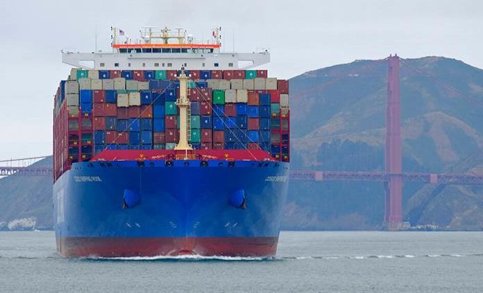Campaña busca evitar que barcos maten ballenas en puertos de California