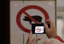 Ciudadanos, sin armas en Sistema Anticorrupción
