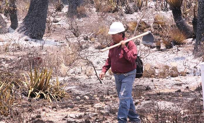 """""""Prácticamente sofocado"""", fuego en San Miguelito"""