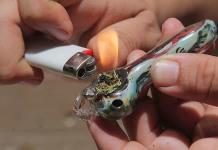 Despenalización: Beneficios y desventajas del consumo de  marihuana