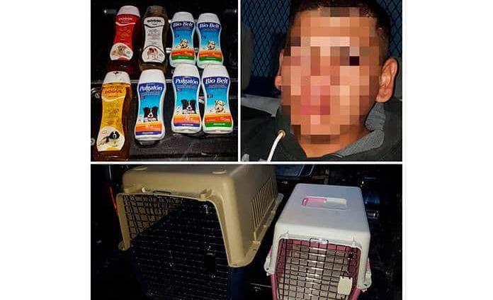 Aprehenden a ladrón que robaba en estética canina