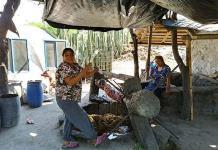 Mezcal de Mexquitic: el pasado regala un futuro