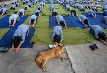 Conmemoran Día del Yoga