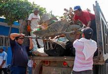 Reportan primer caso de dengue en Cerritos