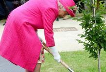 Reina Isabel II rechaza ayuda: todavía puedo plantar un árbol (VIDEO)