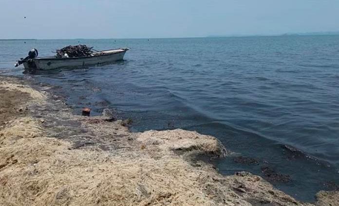 Contaminación y pestilencia alejan a turistas de playa en Oaxaca