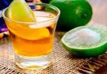 El tequila será la primera bebida alcohólica en el mundo libre de deforestación, anuncia Jalisco