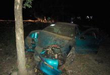 Auto se estrella contra un árbol, muere ocupante