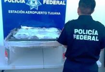 Decomisan crystal y heroína oculta en una mesa de piedra en Tijuana