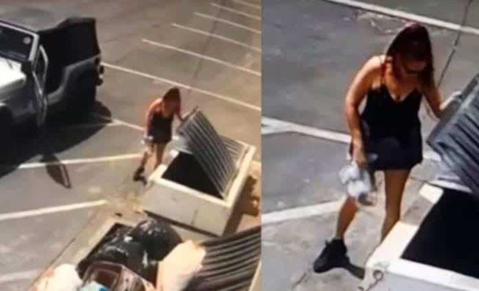 Mujer irá a la cárcel por tirar cachorros a la basura en California