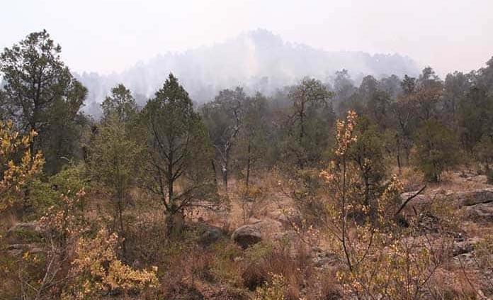 Será sierra de San Miguelito Área de Protección a Flora y Fauna