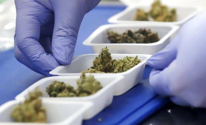 Crece el mercado de productos legales de la marihuana