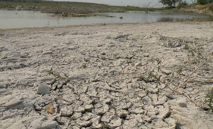 Sequía amenaza con hambruna a la Huasteca
