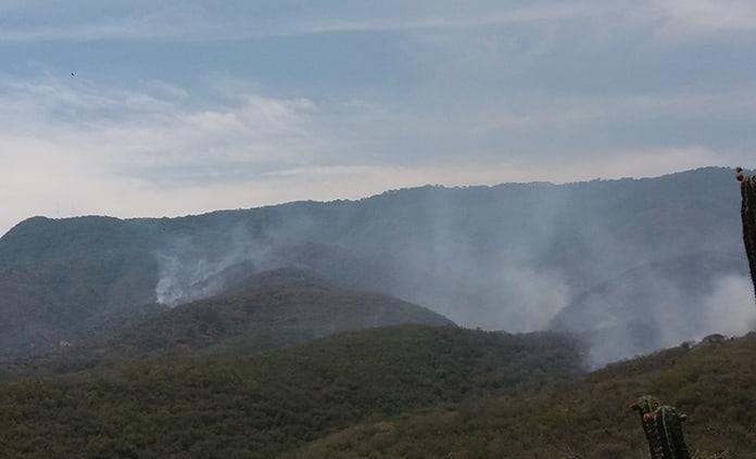 Reforestarán zona afectada  por el incendio del Zapote