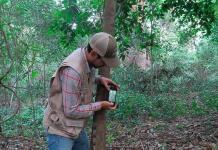 Se mejora protección de 12 áreas naturales