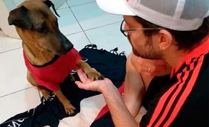 Aficionado rifa boletos para pagar quimioterapias a su perro