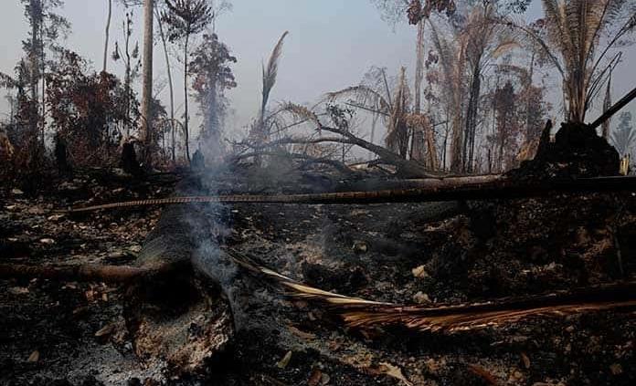 Los focos de incendio en la Amazonía brasileña aumentan un 28 % en julio